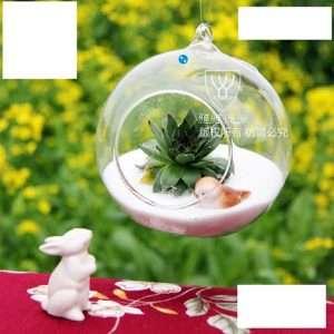 Hanging Glass Vase Terrarium Ball Globe